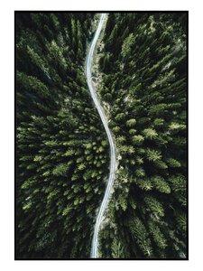 3322881-00000 Scandic Forest II 28x40 cm