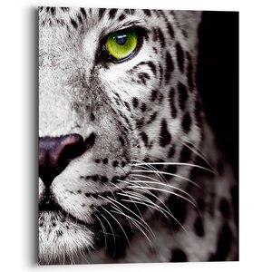 3557005-00000 Cats Eye