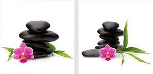 3308260-00000 Zen OrchideeFlower power set