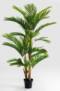 3550098-00000 Deko Pflanze