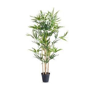 3095450-00000 Bambuspflanze im Topf 4 Stämme