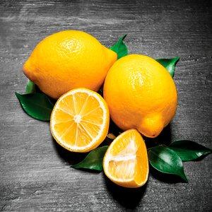 3363634-00000 Küche / Früchte - Fresh Lemon