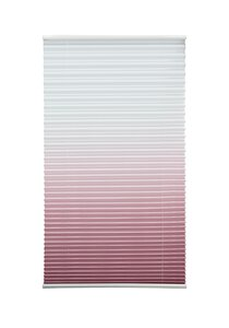 83 Acus Plissee Farbverlauf altrosa M025948-00000