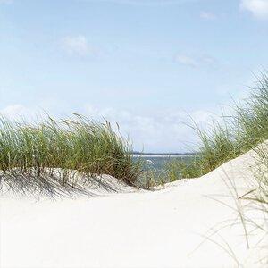 3308003-00000 Landschaft Nordseewhite dunes