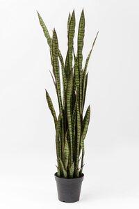 3537030-00000 Deko Pflanze