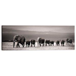 3244373-00000 Line of Elephants