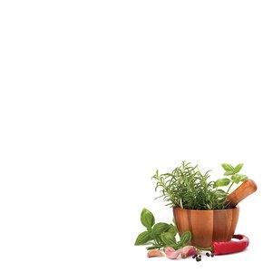3308522-00000 Küche KräuterKitchen herbal II