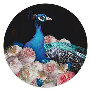 3557029-00000 Peacock