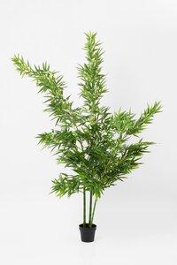 3537032-00000 Deko Pflanze
