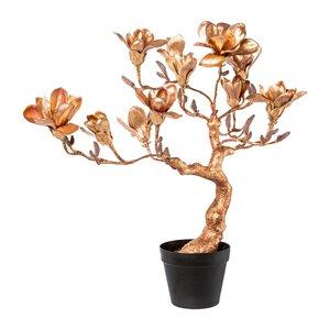 3531412-00000 Magnolienbaum altgold