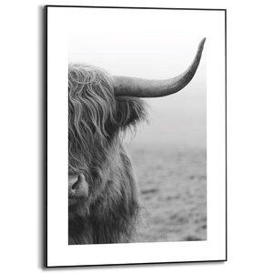 3556955-00000 Highlander