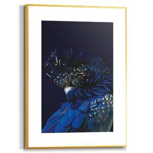 3557050-00000 Blue Parrot