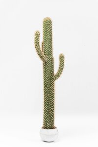 3221070-00000 Deko Pflanze