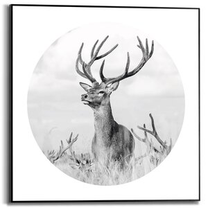 3557124-00000 Oh Deer