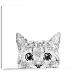 3556997-00000 Cat is Watching