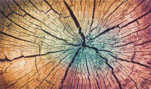 46- Kleen-Tex Matten randlos Wood Land M024965-00000