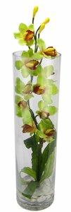 3234144-00000 Orchidee im Glas 64 cm grün