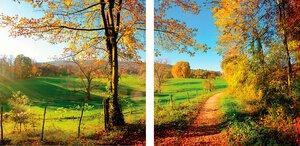 3308258-00000 Landschaft Wald HerbstGreen im