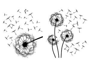 3308555-00000 Stickers BlumenPusteblume
