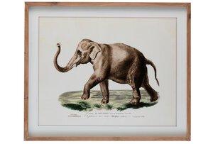 """3581083-00000 Bilderrahmen """"Elefant"""""""