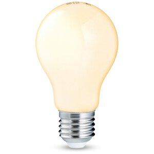 3053206-00000 E27/5 W LED Filament Globe 2er