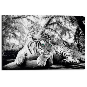 3023514-00000 Tiger is watching you 60x90 cm