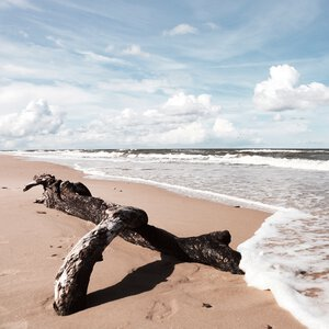 3363642-00000 Strand - Beach II