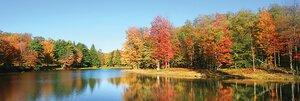 3308219-00000 Landschaft Wald Herbstindian s