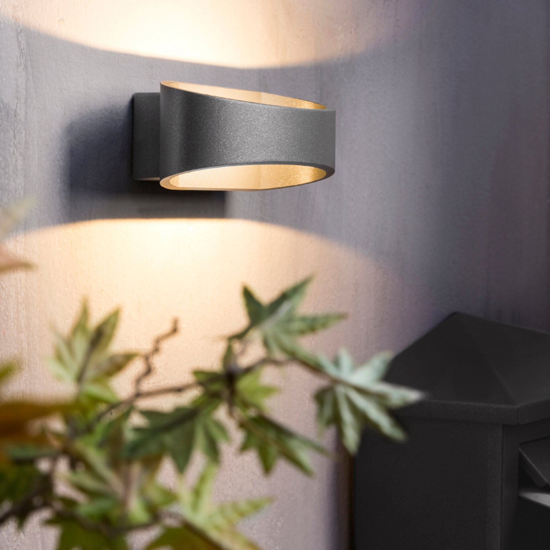 LED-Außenwandleuchte von Brilliant