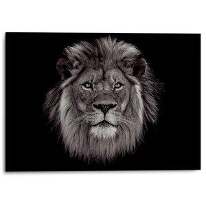3556934-00000 Lion Head