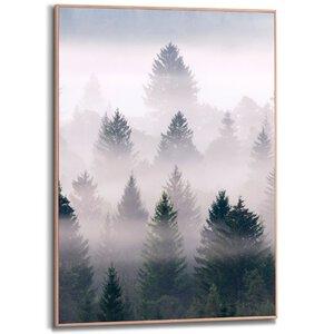 3322858-00000 Misty Woods 50x70 cm