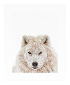 3557103-00000 Wolf Head