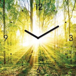 3308344-00000 Landschaft Wald grünGreen Time