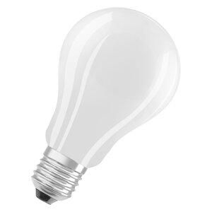 3439877-00000 E27/15 Watt LED Birne