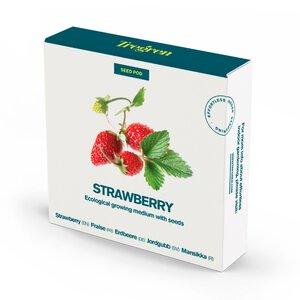 3350006-00000 Erdbeeren Samen