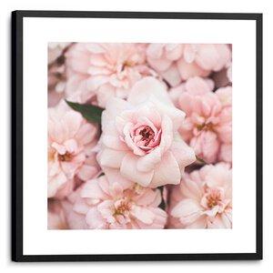 3557023-00000 Pink Peonies Vintage