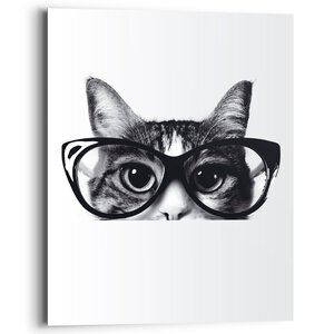 3578012-00000 Cat Classes