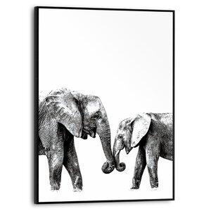 3556949-00000 Elephant Love