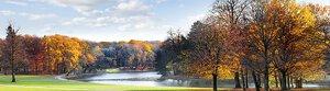 3307974-00000 Landschaft Wald HerbstSunny au