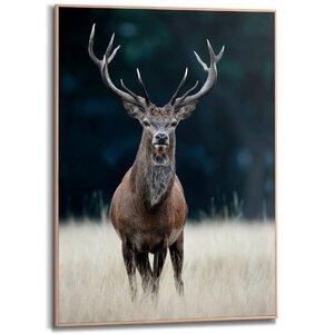 3322866-00000 Deer 50x70 cm
