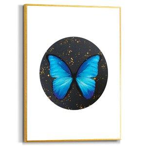 3557049-00000 Blue Butterfly