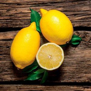 3363652-00000 Küche / Früchte - Fresh Lemon
