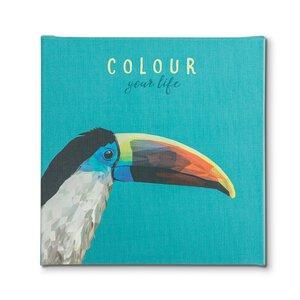 """3561459-00000 Canvas """"Toucan"""""""