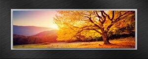 3308538-00000 Landschaft FelderHerbstlandsch