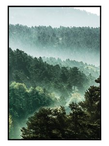 3322880-00000 Scandic Forest I 28x40 cm