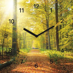 3308293-00000 Landschaft Wald grünWooden Tim