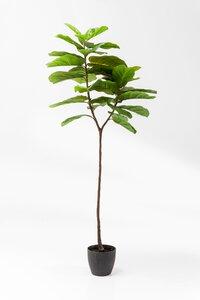 3221056-00000 Deko Pflanze