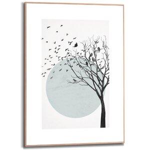 3557093-00000 Birds